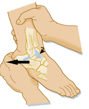 Posterior Drawer Test of the ankle